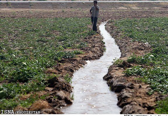 مشکلی در تامین آب کشتهای پاییزه در خوزستان وجود ندارد