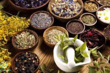 گیاهان دارویی؛ بایدها و نبایدها