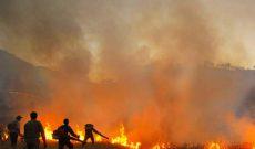 مهار آتش در منطقه حفاظت شده کرائی شوشتر