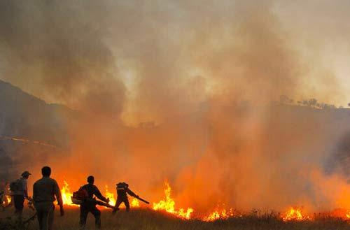 مهار آتش در منطقه حفاظت شده کرایی؛ نفوذ آتش از زمینهای زراعی